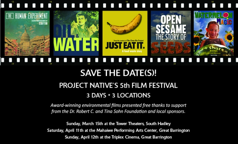 project native film fest