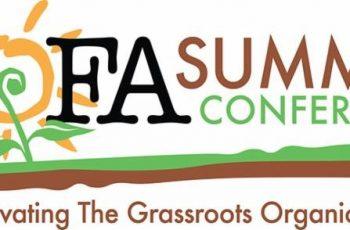 nofa summer logo